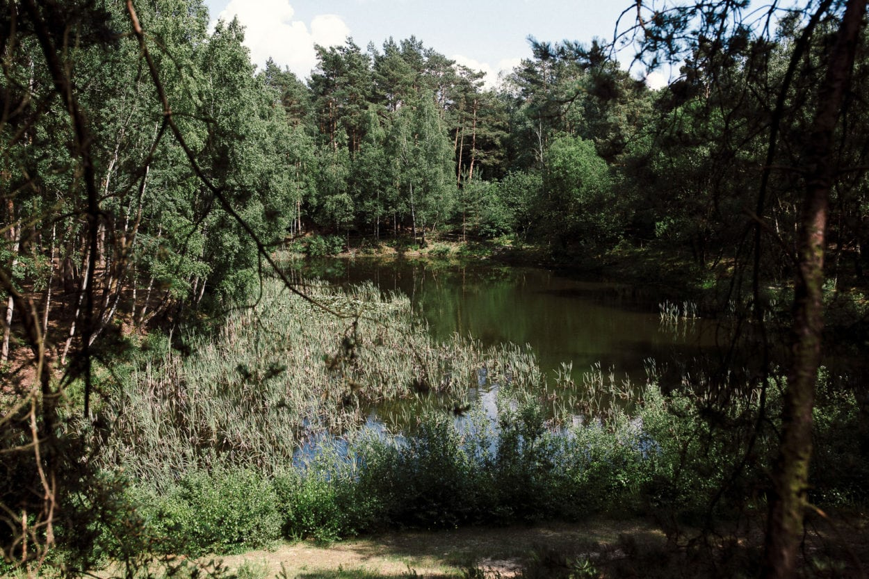 Teich in den Boombergen
