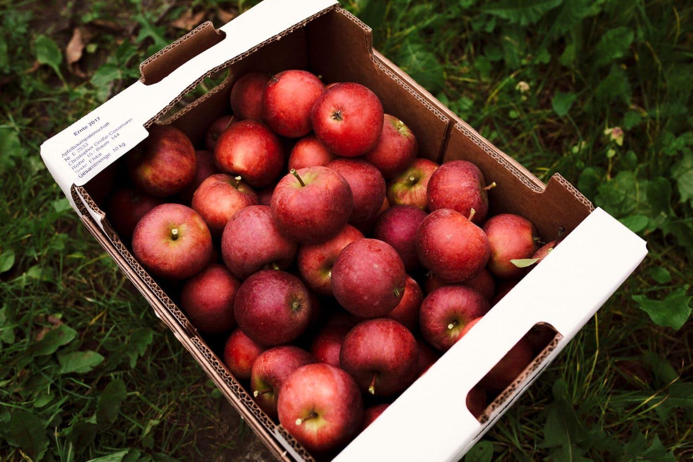 viele Äpfel